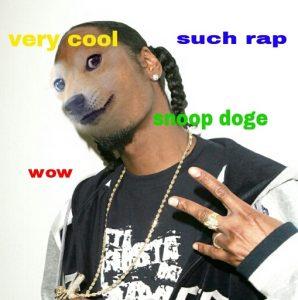SnoopDoge