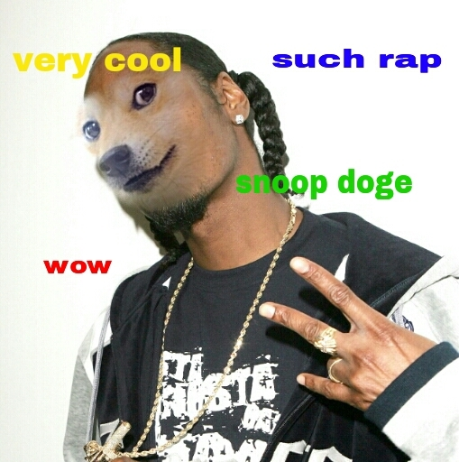 SnoopDoge much wow doge meme the state times