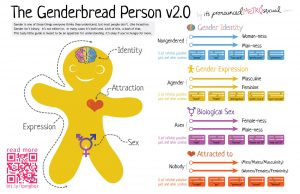 genderbread-2-1-1